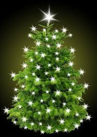 Town Centre Christmas Tree Order Form